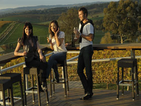 The Lane Vineyard - Accommodation Sunshine Coast