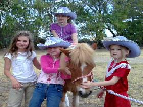 Amberainbow Pony Rides - Accommodation Sunshine Coast