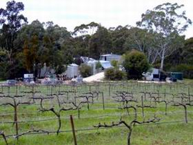 Jeanneret Wines - Accommodation Sunshine Coast