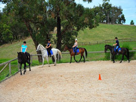 Megan Jones Riding School and Trail Rides - Accommodation Sunshine Coast