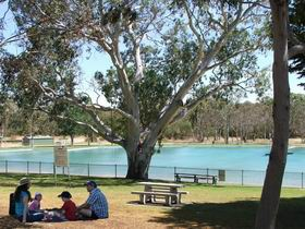 Naracoorte Nature Park and Swimming Lake - Accommodation Sunshine Coast