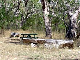 Penola Conservation Park - Accommodation Sunshine Coast