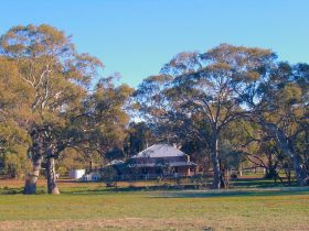 Old Wilpena Station - Accommodation Sunshine Coast