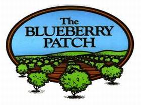 The Blueberry Patch - Accommodation Sunshine Coast