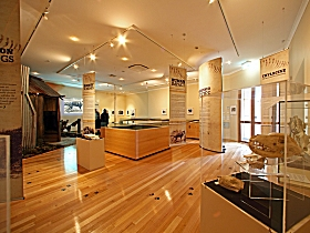 Tasmanian Tiger Exhibition - Accommodation Sunshine Coast