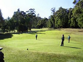 Sheffield Golf Course - Accommodation Sunshine Coast