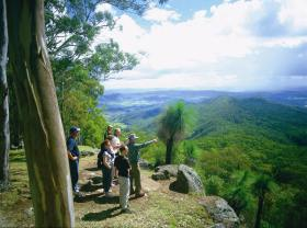 Gold Coast Hinterland Great Walk - Accommodation Sunshine Coast