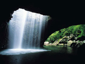 Natural Bridge Springbrook National Park - Accommodation Sunshine Coast