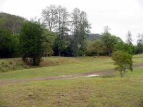 Brooyar State Forest - Accommodation Sunshine Coast