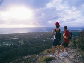 Mount Coolum National Park - Accommodation Sunshine Coast