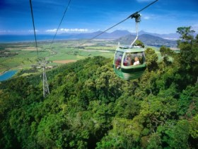 Skyrail Rainforest Cableway - Accommodation Sunshine Coast