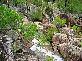 Crows Nest National Park - Accommodation Sunshine Coast