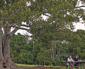 Ravensbourne National Park - Accommodation Sunshine Coast