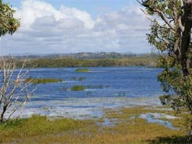 Lake Barfield - Accommodation Sunshine Coast