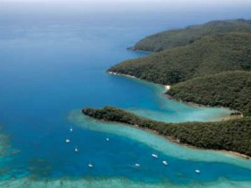 Butterfly Bay - Hook Island - Accommodation Sunshine Coast