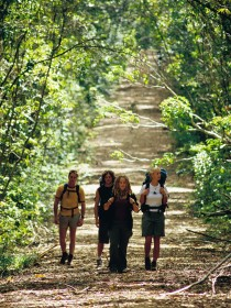 Wet Tropics Great Walk - Accommodation Sunshine Coast