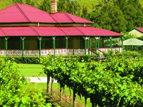 OReillys Canungra Valley Vineyards - Accommodation Sunshine Coast