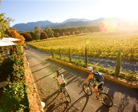Boyntons Feathertop Winery - Accommodation Sunshine Coast