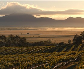 Montara Wines - Accommodation Sunshine Coast