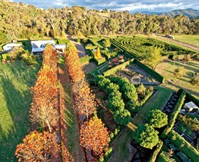 High Country Maze - Accommodation Sunshine Coast