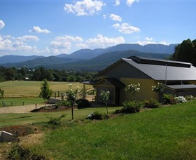 Ringer Reef Winery - Accommodation Sunshine Coast