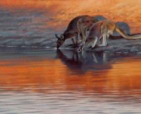 Steve Morvell Wildlife Art - Accommodation Sunshine Coast