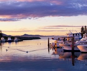 Bermagui Fishermens Wharf - Accommodation Sunshine Coast