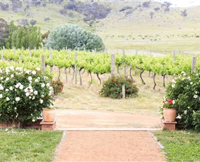 Brindabella Hills Winery - Accommodation Sunshine Coast