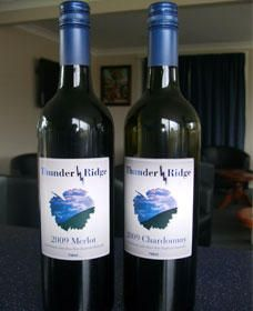 Thunder Ridge Wines - Accommodation Sunshine Coast