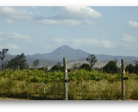 Ironbark Ridge Vineyard - Accommodation Sunshine Coast