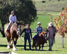 Bathurst Farm Experience - Accommodation Sunshine Coast
