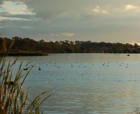 Lake Inverell Reserve - Accommodation Sunshine Coast