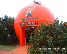 Gayndahs Big Orange - Accommodation Sunshine Coast