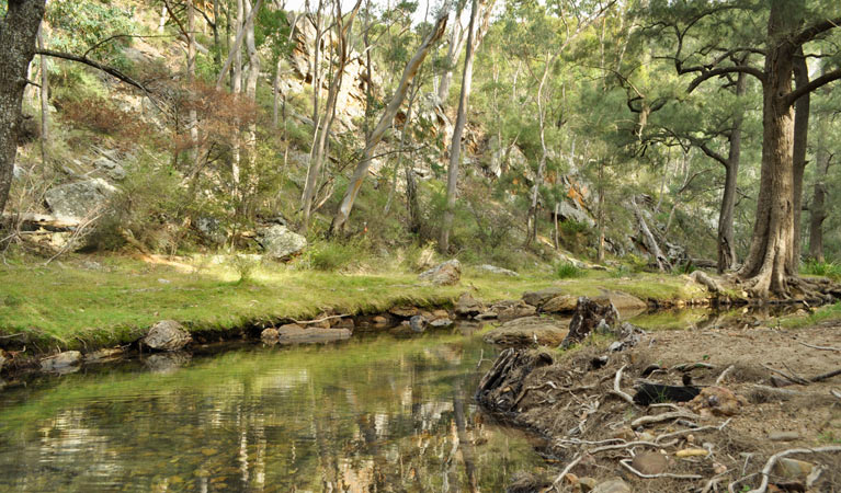 Capertee National Park - Accommodation Sunshine Coast