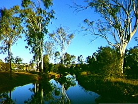 Dingo Creek Park - Accommodation Sunshine Coast