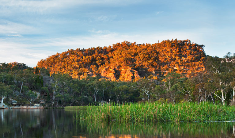 Wollemi National Park - Accommodation Sunshine Coast