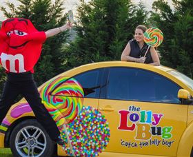 The Lolly Bug - Accommodation Sunshine Coast