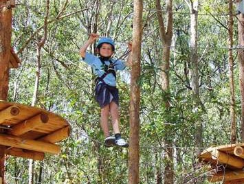 TreeTops Newcastle - Accommodation Sunshine Coast