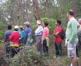 Boronia Tours