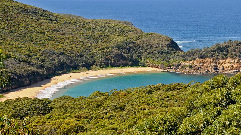 Bouddi National Park - Accommodation Sunshine Coast