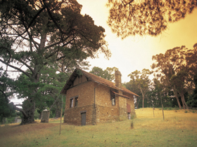 Heysen - The Cedars - Accommodation Sunshine Coast