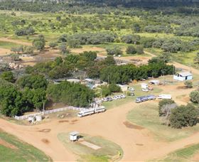 Blackall Saleyards - Accommodation Sunshine Coast
