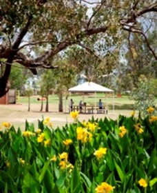 Charleville - Graham Andrews Parklands - Accommodation Sunshine Coast