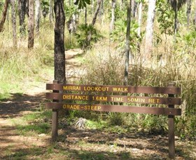 Mirrai Lookout Walk - Accommodation Sunshine Coast