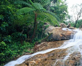 Finch Hatton Gorge - Accommodation Sunshine Coast
