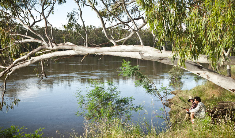 Murray Valley National Park - Accommodation Sunshine Coast