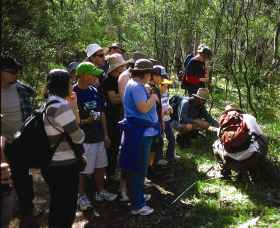 Warrumbungle National Park Discovery Program - Accommodation Sunshine Coast