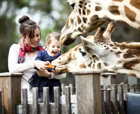 Taronga Western Plains Zoo Dubbo - Accommodation Sunshine Coast