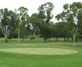 Moree Golf Club - Accommodation Sunshine Coast
