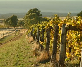 Captains Creek Organic Wines - Accommodation Sunshine Coast